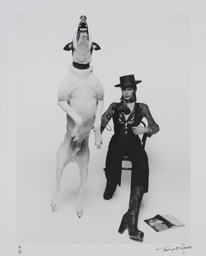 『Diamond Dogs』(1974年)をリリースした際のプロモーション写真 / Photo by Terry O'Neill , Image ©Victoria and Albert Museum