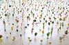 古代から現代までの多彩な植物表現集う展覧会『芸術植物園』