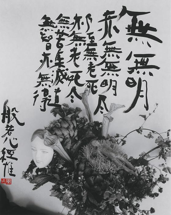 荒木経惟作品 ©Nobuyoshi Araki 荒木経惟作品 ©Nobuyoshi Araki