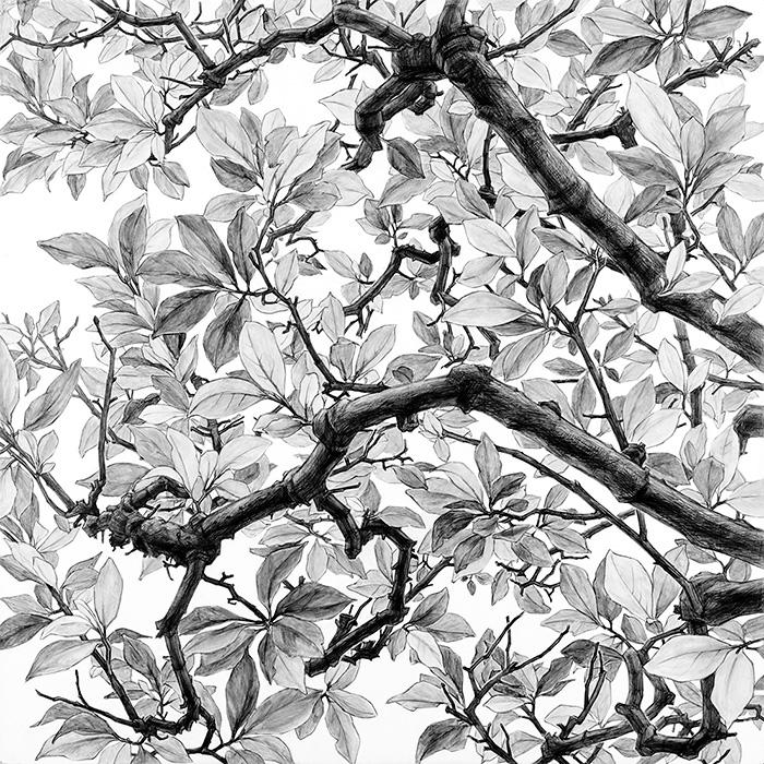 日高理恵子『空との距離XIV』ドローイング 2017年 ©Rieko Hidaka Courtesy of Tomio Koyama Gallery