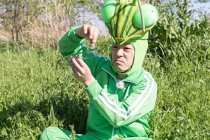 『香川照之の昆虫すごいぜ! ~2時間目 モンシロチョウ~』より