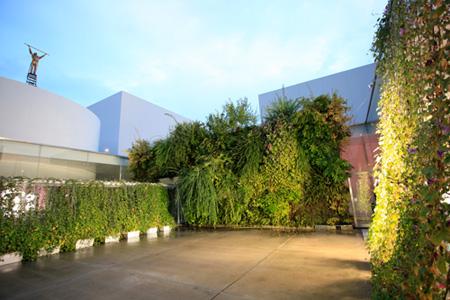 パトリック・ブラン、日比野克彦『サンセット〜サンライズ・アーク』光庭プロジェクト 展示風景