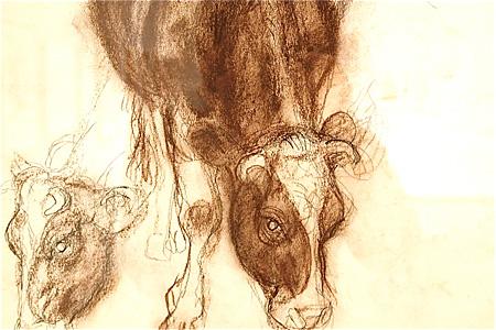 『牛』(部分)紙、コンテ、制作年不詳