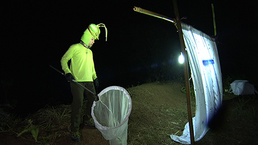 大きな網を手に夜間のロケに挑む香川照之