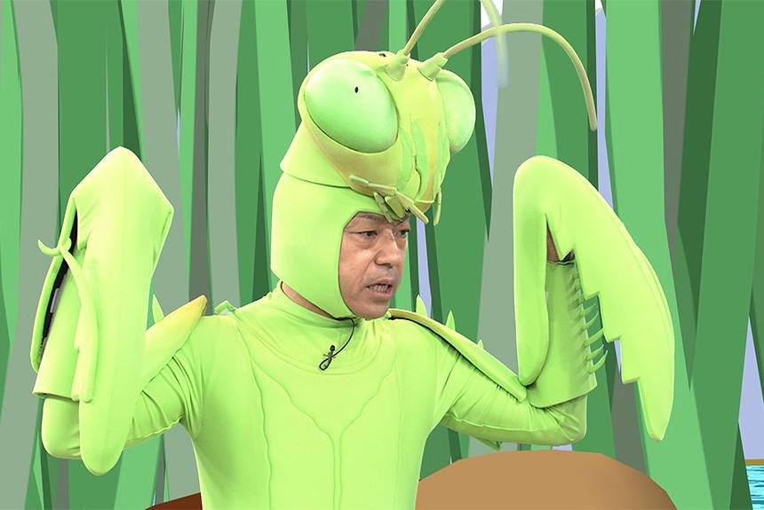 カマキリ先生 動画