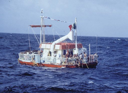 『The Raft』