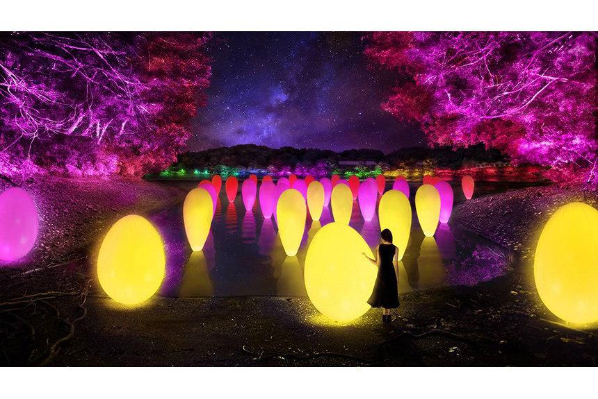 チームラボ北欧体感の新施設を彩る。『森と湖の光の祭』12月開催