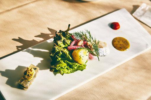 ノルウェー産にしんの前菜(右:自家製にしんのマリネ、マスタードソース 左:にしんのゼリー寄せ、マスタードアイス)