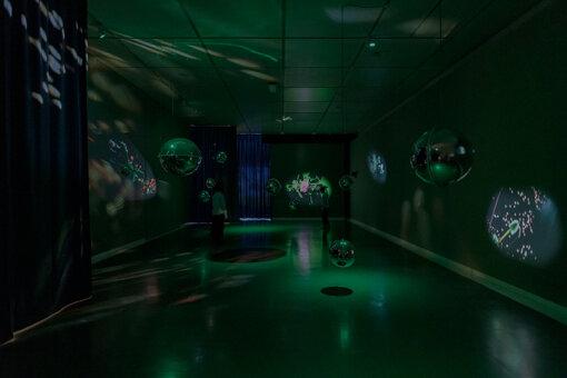 『眠れる花粉』(2014年)展示風景