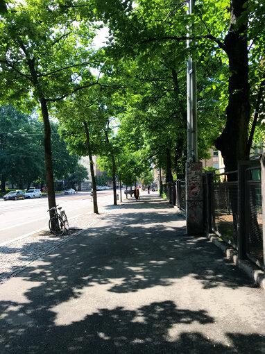 夏至祭の週末、ひと気のないヘルシンキの街(写真:筆者提供)