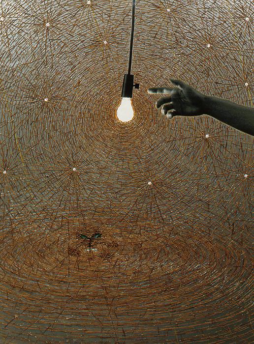 千崎千恵夫『手と電球』1999  78 x 57.5 cm   photograph, pine needles