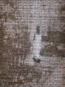 千崎千恵夫『歩く女』2007  75 x 53.5 cm   photograph, pine needles