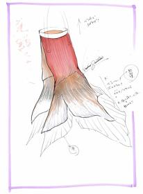澤田石和寛による『蜜のあわれ』衣装コンテ