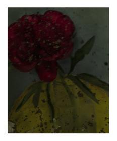 サラ・ムーン『最後からふたつめの芍薬』2011年 ©Sarah Moon
