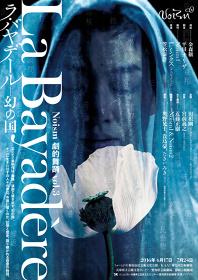Noism 劇的舞踊 vol.3『ラ・バヤデール―幻の国』メインビジュアル