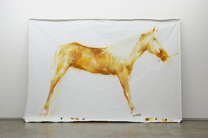 小林正人『名もなき馬』2014 ©Masato Kobayashi, courtesy of ShugoArts