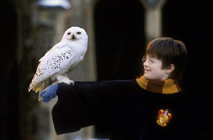 『ハリー・ポッターと賢者の石』 HARRY POTTER characters, names and related indicia are © & ™Warner Bros. Entertainment Inc. Harry Potter Publishing Rights ©JKR. (s16)