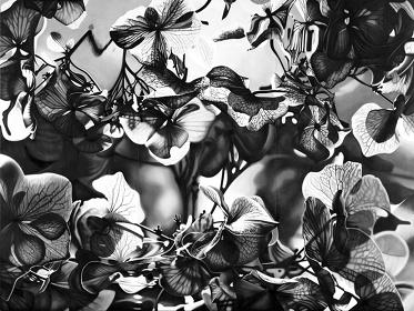 宮本佳美『creation』2012 水彩、アクリル、綿布218.2×291cm
