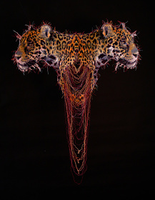 宮田彩加『ジャガーの形態と対称性/Symmetry and Form of a Jaguar』2014年 ミシン糸 約80×62㎝ 撮影:南竜司 / photo: RyujiMinami