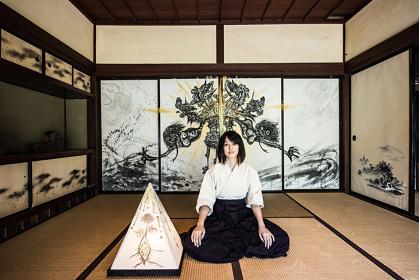 『福島現代美術ビエンナーレ2016』イメージビジュアル