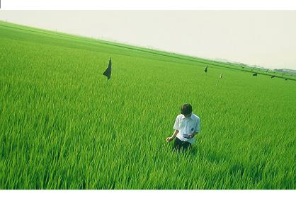 『リリイ・シュシュのすべて』 ©2001 LILY CHOU-CHOU PARTNERS
