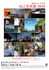 『横浜赤レンガ倉庫 ねこ写真展 2016~今を生きる猫たちのキロク・キオク~』フライヤービジュアル