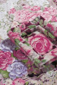 江頭誠『Rose Blanket Collection'16』メインビジュアル