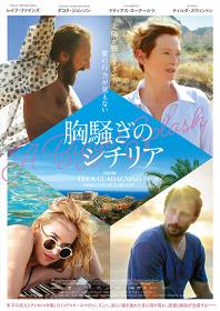 『胸騒ぎのシチリア』ポスタービジュアル ©2015 FRENESY FILM COMPANY. ALL RIGHTS RESERVED