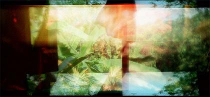アピチャッポン・ウィーラセタクン『灰』2012年 シングルチャンネル・ヴィデオ 東京都写真美術館蔵