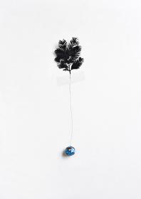 川辺ナホ『Metasequoia』2017年、C-Print、30×45cm