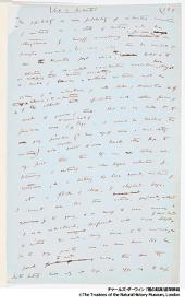 チャールズ・ダーウィン『種の起源』直筆原稿 ©The Trustees of the Natural History Museum, London