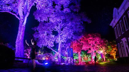 チームラボ『チームラボクリスタル花火』2014年~ Interactive Light Sculpture, LED, Endless, Sound: teamLab