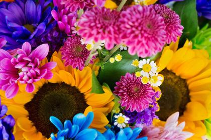 Mika Ninagawa『earthly flowers, heavenly colors』イメージビジュアル ©mika ninagawa, Courtesy of T OMIO KOYAMA GALLERY