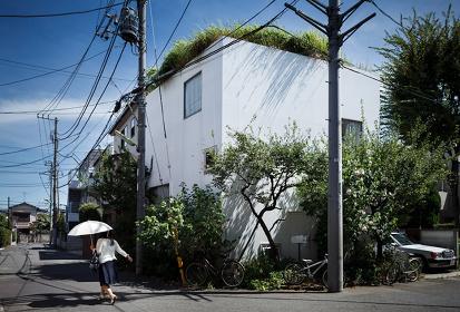 ジェレミ・ステラ『妹島和世/梅林の家』2010年9月2日