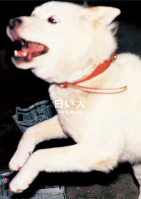 梅佳代『白い犬』表紙
