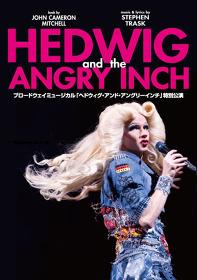 『HEDWIG AND THE ANGRY INCH ブロードウェイミュージカル「ヘドウィグ・アンド・アングリーインチ」特別公演』メインビジュアル