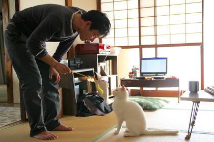『愛しのノラ~幸せのめぐり逢い~』ポスタービジュアル ©日本スカイウェイ