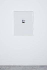林檎の木6 2017 c-print, acrylic frame 63.1×52.8cm ©Yoshihiko Ueda