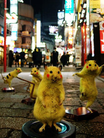 Chim↑pom『SUPER RAT』(2006, 2011) ©Chim↑Pom Courtesy of the artist and MUJIN-TO Production, Tokyo