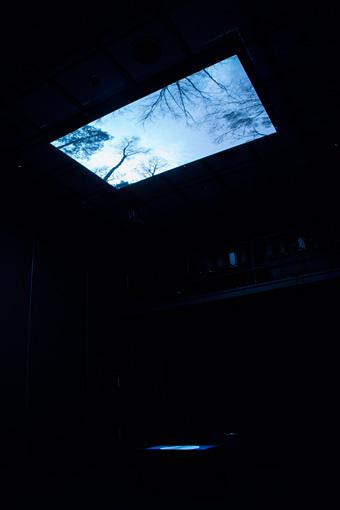 『KAAT突然ミュージアム2016』展示風景 平川祐樹 撮影:西野正将
