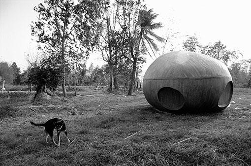 アピチャッポン・ウィーラセタクン『ナブア森の犬と宇宙船、2008年』 2013年 発色現像方式印画  東京都写真美術館蔵
