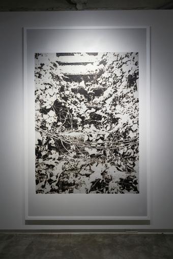 untitled(wood land) / 2016 / burnt paper / H2046mmxW1326mm  ©KosukeIchikawa. Photo:木奥恵三