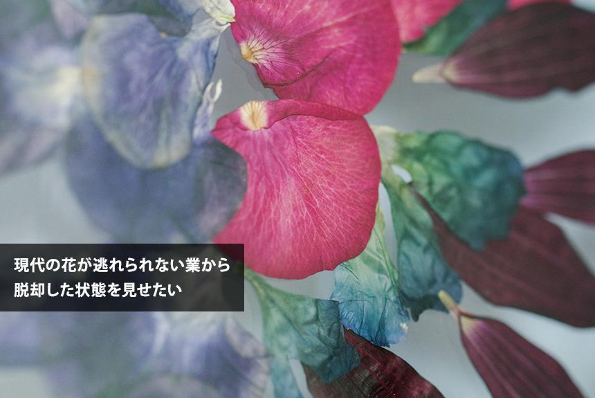 フラワーアーティスト相壁琢人(ahi.)が押し花で見せる生命力