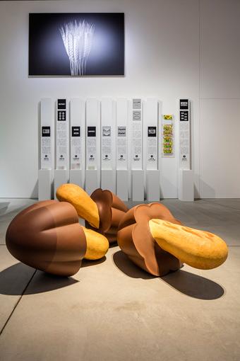 21_21 DESIGN SIGHT企画展『デザインの解剖展:身近なものから世界を見る方法』(2016年10月14日~2017年1月22日 / Photo:Satoshi Asakawa)