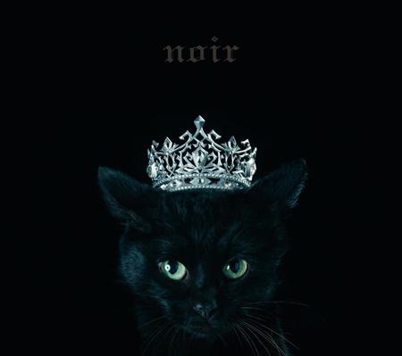 """Aimer『BEST SELECTION """"noir""""』通常盤ジャケット"""