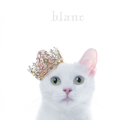 "Aimer『BEST SELECTION ""blanc""』通常盤ジャケット"
