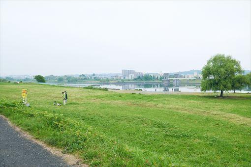多摩川河川敷の様子