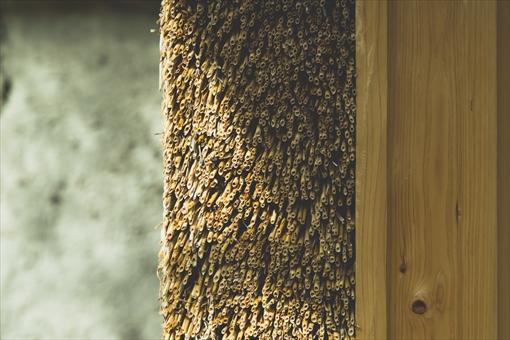 素材は小麦。日本古来の茅葺きよりも薄く葺ける手法を使っている。ちなみに日本の茅葺きは、海外の職人からすると「なんでそんなに分厚いんだ、お前たちはクレイジーだな」と言われるとか