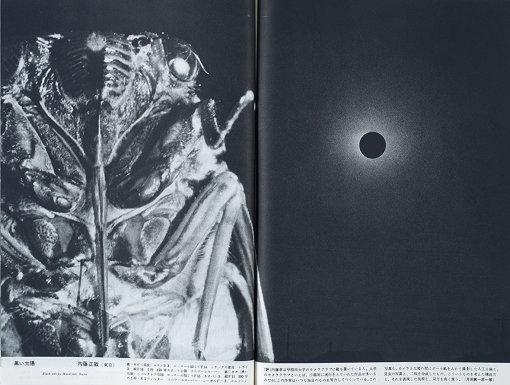 『黒い太陽』 『カメラ芸術』1959年11月号より