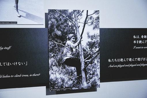 木登りをするリンドグレーンの写真